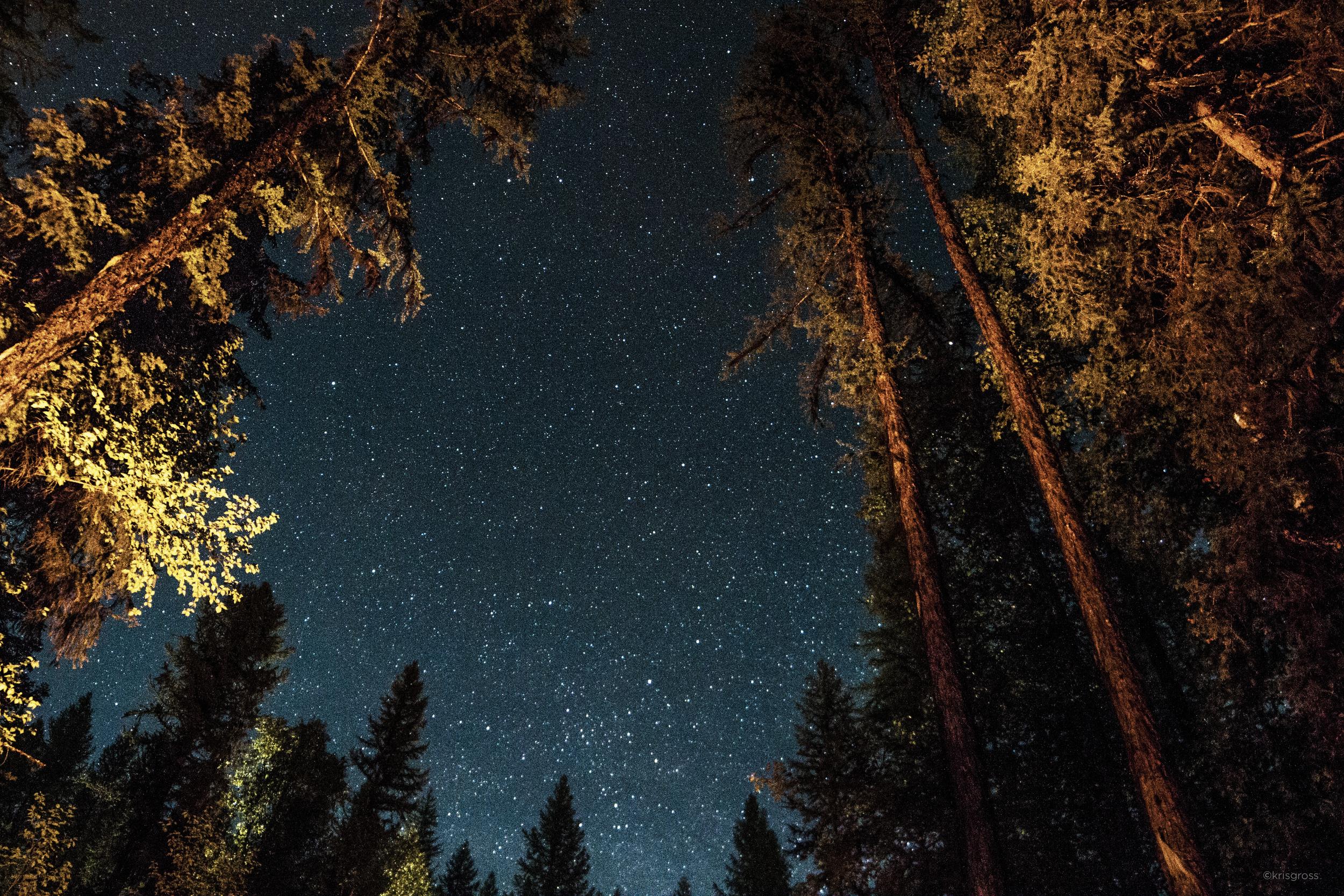 galaxy_52515